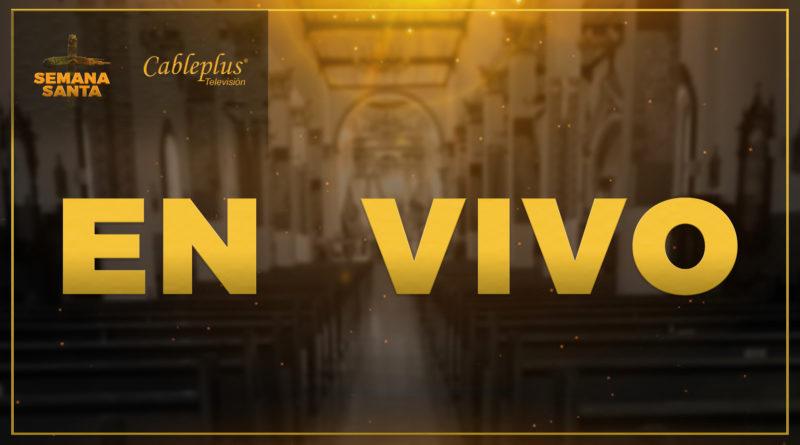 EN VIVO | Domingo de Ramos | Bendición de Ramos y Eucaristía Solemne